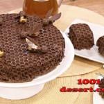 1371675932_tort-shokolad-v-sotah.jpg