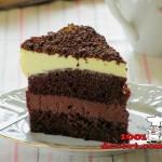 1383432876_shokoladno-apelsinovyy-tort.jpg